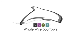 Whale Wise Eco Tours